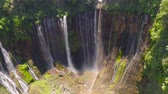 palmeras : hermosa cascada Coban Sewu en bosque tropical, Java Indonesia. vista aérea cascada tumpak sewu en imágenes aéreas de la selva tropical Archivo de Video