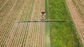 fertilizer field : Spraying with pesticides and herbicides crops aerial view. Tractor with pesticide fungicide insecticide sprayer on farm land. Stock Footage