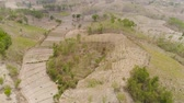 pirinç : agricultural land in rural areas with farmlands, fields with crops, trees in arid hilly terrain. aerial view growing crops in asia in hilly areas Indonesia.