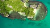 入り江 : Tropical islands and blue sea, aerial view . Caramoan Islands, Philippines. Rocky islands with trees. Summer and travel vacation concept. Rocky island with rainforest 動画素材
