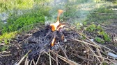 combustão : a fire burns in the garden. burning of organic debris in the process of working in the garden