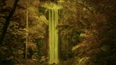 irreal : Enchanted forest with waterfall