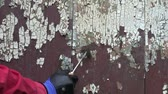 scrapper : Scrapping old cracked paint from  old wooden farm barn door Stock Footage