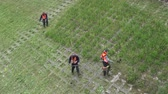 kırpma : Lithuania, Vilnius – May 30: workers with power tool string lawn trimmer mower cutting grass near Neris river, May 30, 2014, Vilnius, Lithuania