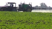 machinery : tractor sprinkler spraying  fertilizers pesticides on rapeseed field