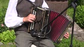 accordionist : Vilnius district Lithuania june 2013: lithuanian musician play folk country music with accordion  in  village