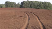 recentemente : Field of newly sown wheat with tractor tracks Vídeos