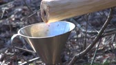сок : fresh healthy spring birch sap drops in metal funnel