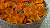officinalis : Rotating fresh medical marigold calendula flowers in basket background