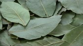baía : Rotating dry laurel leaves food spice background