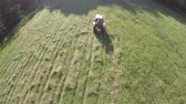 mowing : Hay time, small retro tractor cut  grass from summer end meadow, aerial view