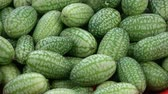 melão : Rotating fresh mouse melons cucamelons food background Stock Footage