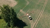 Farm tractor in early spring spraying  crop field, aerial view