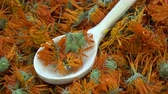officinalis : Rotating dried marigold calendula medical flowers background with wooden spoon