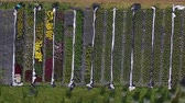 flowerbeds : Various flowers and plants nursery flowerbeds and greenhouse in farm, aerial view Stock Footage