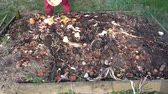 pattumiera : Put organic food waste in compost pile heap bin in spring time