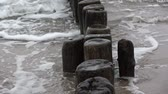 bałtyk : Old ruined  wooden posts jetty piles fragment  on  sea beach and waves Wideo