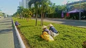 organic : NHA TRANG, KHANH HOA  VIETNAM - OCTOBER 28, 2016: Vietnamese women in white national hats make weeding of green lawn by city road on October 28 in Nha Trang Stock Footage