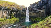 svartifoss : Amazing View of Basalt Black Waterfall with Blue Sky and Green Grass. Skaftafell