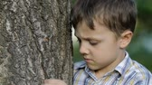 entediado : sad little boy outdoors at the day time Stock Footage