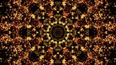 padrão floral : Nature Kaleido 07: A radial kaleidoscope of fall colors (Loop).