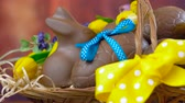 Happy Easter hamper of chocolate eggs and bunny rabbits in large basket with silk tulips on dark wood table, dolly close up.