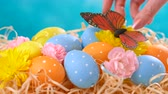 Happy Easter ornaments, eggs and spring flowers on a blue and white background.