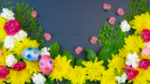 Easter springtime overhead flat lay display of fresh flowers on dark blue wood table background, real time. Vídeos
