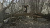 trilhas : slow motion of man trail running jumps over log