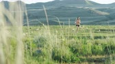 rabo de cavalo : Woman running through desert landscape Antelope Island, Utah