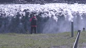 northern hemisphere : woman taking photograph of Dettifoss in Iceland Stock Footage