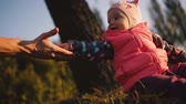 autumn : Babe sits on autumn field. Near the hand of his father. Stock Footage