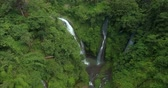 vegetação : Three powerful waterfalls with water flowing into a big river. Shot in a tropical jungle.