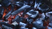 shimmers : Burning charcoal barbecue stove Stock Footage