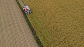 точка зрения : Aerial view of Rice harvesting in Japan Стоковые видеозаписи
