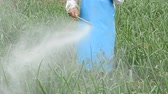 sprey : farmer spraying pesticide at onion field in thailand