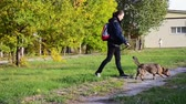 sahip : Young woman walking with dog in park