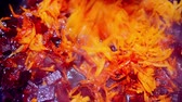 passover jewish : carrots and beets are simmered in a frying pan. Stock Footage