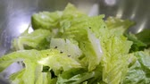 diet : oil salt and pepper on lettuce. Slow motion. Stock Footage