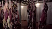refrigerated : raw meat hanging in a slaughterhouse