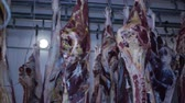 butchered : carcass of raw meat beef pork hanging on hooks in the freezer to production