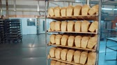 горячая линия : Bread fresh baked bun bread bakery food factory production with fresh products. Стоковые видеозаписи