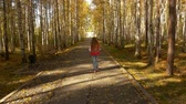 nyírfa : The camera follows the girl walking along the autumn alley in the park. Yellow leaves fall Stock mozgókép
