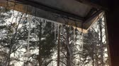 спокойные сцены : Icicles melt on roof winter gazebo in country village. Snowy icicles and garland. Spring concept.