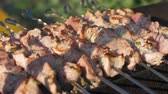 carne de porco : Shashlik barbecue grilling on skewers with smoke, dolly shot