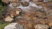 montanhas rochosas : Clear water flow, rocky river closeup. Flowing water of creek in mountain valley