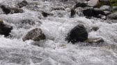 torrente : Rapid river splashing and flowing on rocks in mountain valley, slow motion