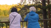 metade do comprimento : Two female seniors standing near fence and looking at lake in park, back view