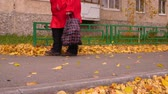 saco : Senior woman walking on footpath with grocery bag in autumn park Stock Footage
