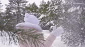 к северу : Cute girl under huge snowfall in woods. Close up happy and joyful little girl in winter forest under the snowfall. Slow Motion